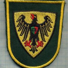 Uniforma militara - 87 - EMBLEMA MANECA - MILITARA?-POLITIE? -GERMANIA? -starea care se vede