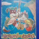 Motanel si Azorel alpinisti (carte de colorat) /  R6P5F