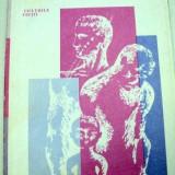 PSIHOLOGIA VIRSTELOR-URSULA SCHIOPU, EMIL VERZA 1981 - Carte Psihologie