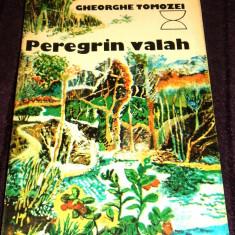 Carte Epoca de aur - Gheorghe Tomozei - Peregrin valah, drumetii, colectia Cantarea Romaniei 1978