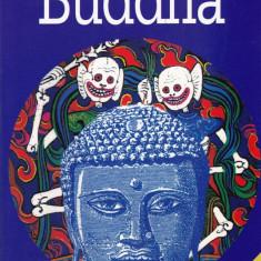 Jane Hope - Cite ceva despre Buddha - 459609 - Carti Budism