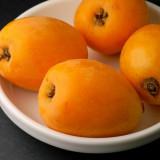 Pomi fructiferi - Pom mare cu coronament, roditor de LOQUAT fructe uriase Eriobotrya japonica