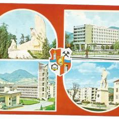 @carte postala(ilustrata)-BAIA MARE-colaj - Carte Postala Moldova dupa 1918, Necirculata, Printata