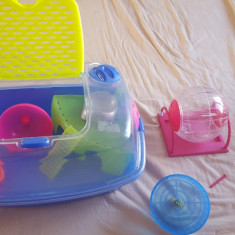Vand cusca hamster cu accesorii