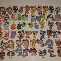 LPS, littlest pet shop figurine rare, editii limitate