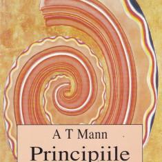 A.T. Mann - Principiile reincarnarii - 551033 - Carte Hobby Paranormal