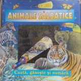 Animale salbatice - 665035