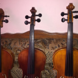 3 viori acustice - Vioara Gewa