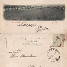 Falticeni ( Suceava, Bucovina )- Vedere generala -clasica, rara - Carte Postala Bucovina pana la 1904, Circulata, Printata